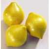 Kaufladen Zitrone